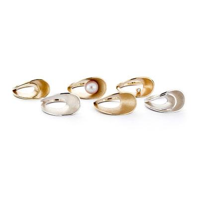 Ringen van zilver en goud.